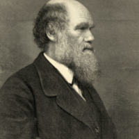 """Mr. C. R. Darwin, Author of the Origin of Species."""