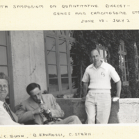 L. C. Dunn, B. Ephrussi, C. Stern sitting outside, building in background.