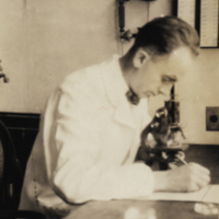 Homer Smith sitting at desk, looking into microscope, Woods Hole.