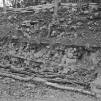Mayan excavation site