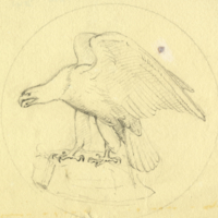 Design for coin or medallion (eagle)