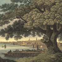 Philadelphia from the Great Tree Kensington, under which Penn, made his Treaty with the Indians.
