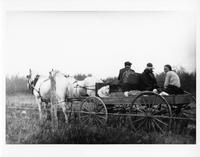 F-276: Ojibwa in horse-drawn wagon